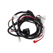 Wire Harness Assy; CSC go., QMB139 ScootersS