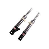 NCY Front Forks (DiskType, Titanium); Honda Ruckus, DioS