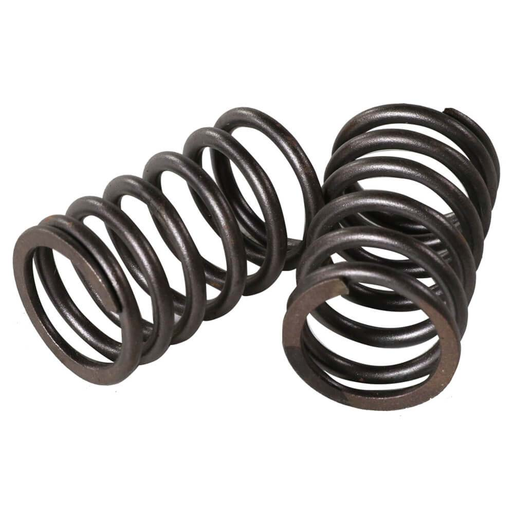 Valve Springs (Outer, pair); GY6