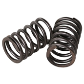 Valve Springs (Outer, pair); GY6S
