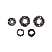 Engine Case Oil Seal And Bearing Kit; CSC go., QMB139 ScooteS