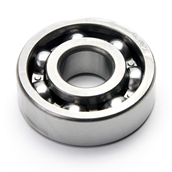Spring Gear Roller Bearing; Rally, P200S