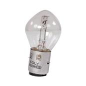 Headlamp Bulb (6 Volt 25/25 Watt)S